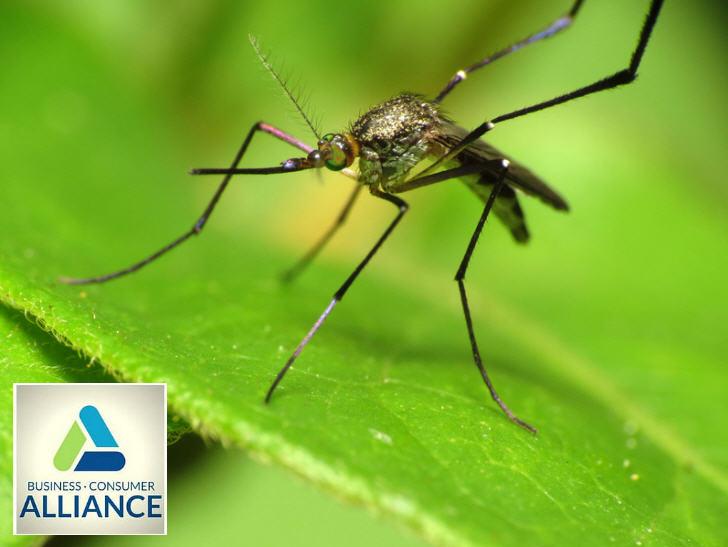 5 Active Ingredients to Help Protect Against Zika Virus