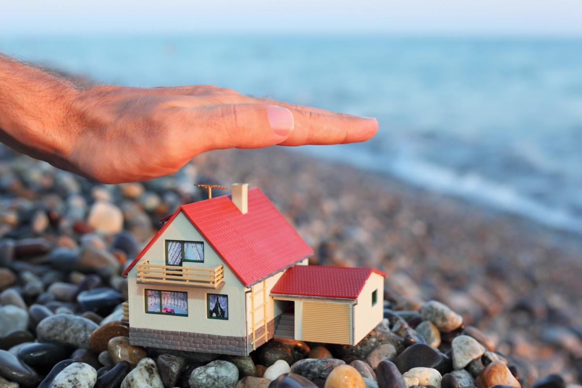 Kim's Catch: Choice Home Warranty
