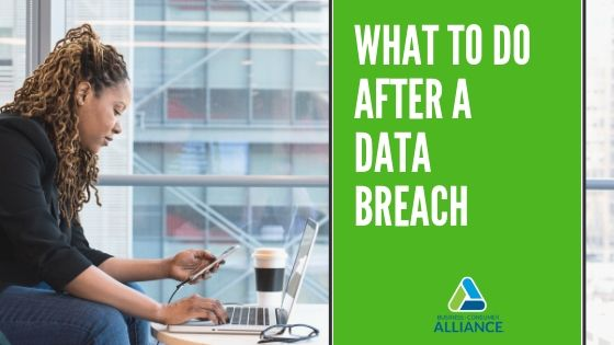 What to Do After a Data Breach